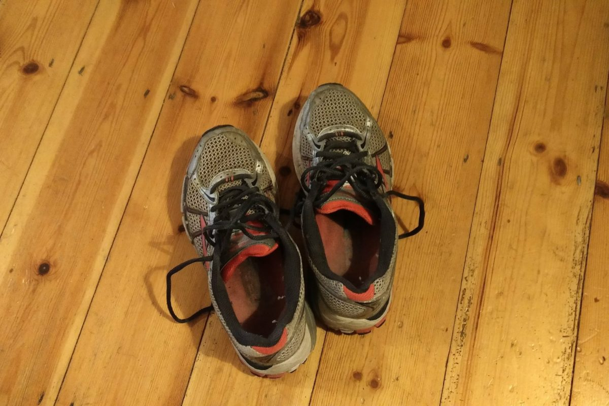 A photo of my running shoes. They haven't been taken for a jog yet.