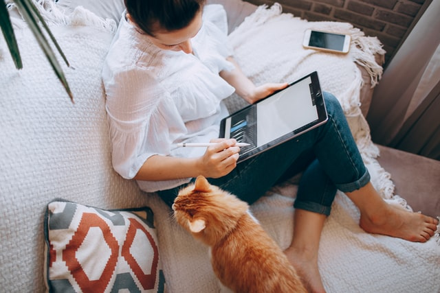 A photo of a woman working on a tablet on the sofa with a cat. Photo by Helena Lopes on Unsplash