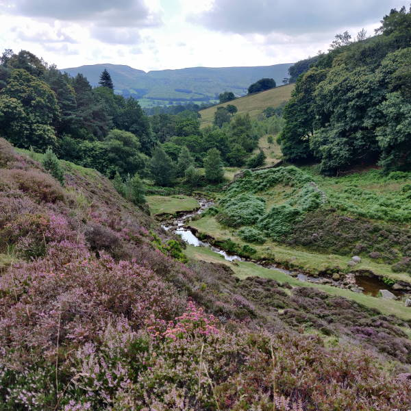 View across a valley near Edale